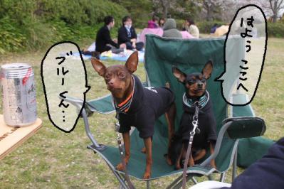 2013_03_31_9999_15.jpg