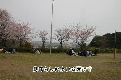 2013_03_31_9999_3.jpg