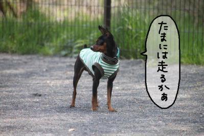 2013_04_14_9999_47.jpg