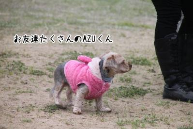 2013_04_20_9999_21.jpg