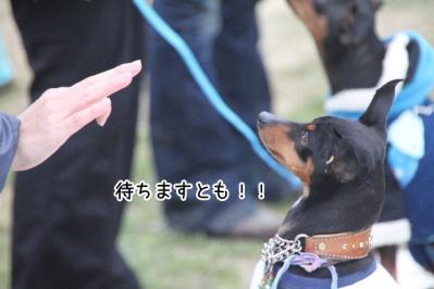 2013_04_20_9999_48.jpg