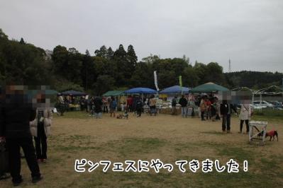 2013_04_20_9999_71.jpg