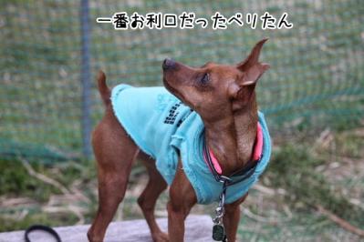 2013_04_20_9999_76.jpg
