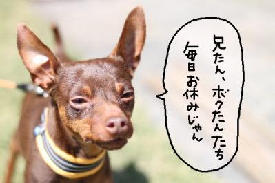 2013_04_28_9999_34.jpg