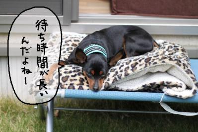 2013_05_01_9999_9.jpg