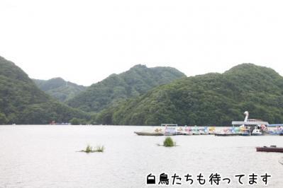 2013_05_19_9999_10.jpg