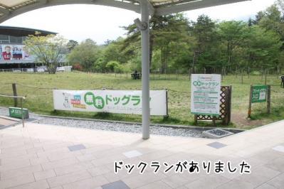 2013_05_25_9999_9.jpg