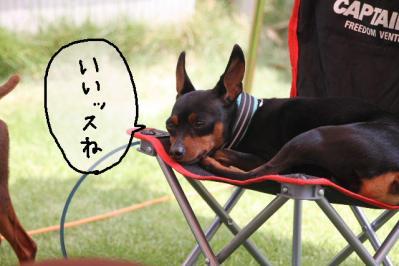 2013_06_09_9999_6.jpg