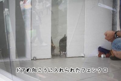 2013_06_16_9999_33.jpg