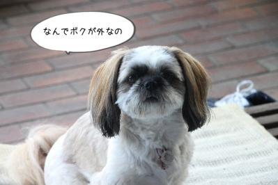 2013_07_08_9999_37.jpg