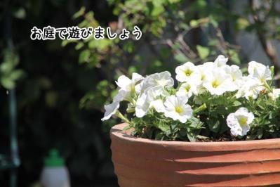 2013_07_09_9999_11.jpg
