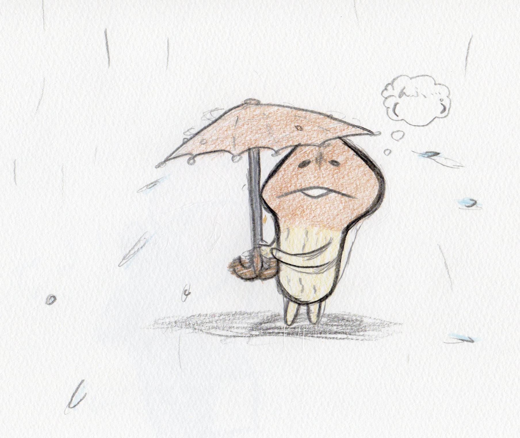 梅雨となめこ