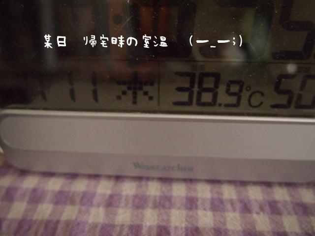 P7110048.jpg