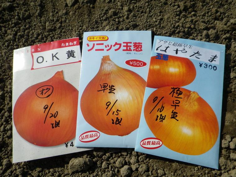 玉ねぎ種袋13_09_21