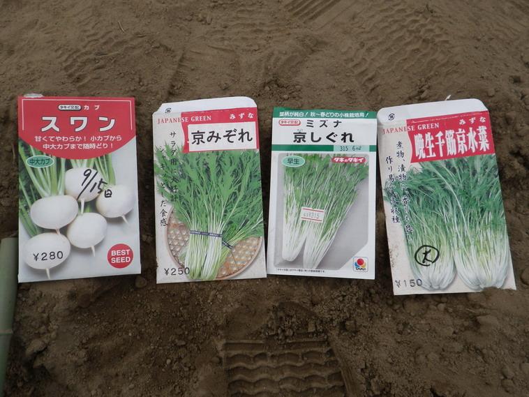 種蒔き2_13_10_06