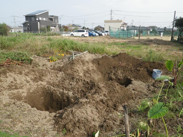 穴掘り1_13_11_02