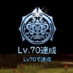 70レベル!