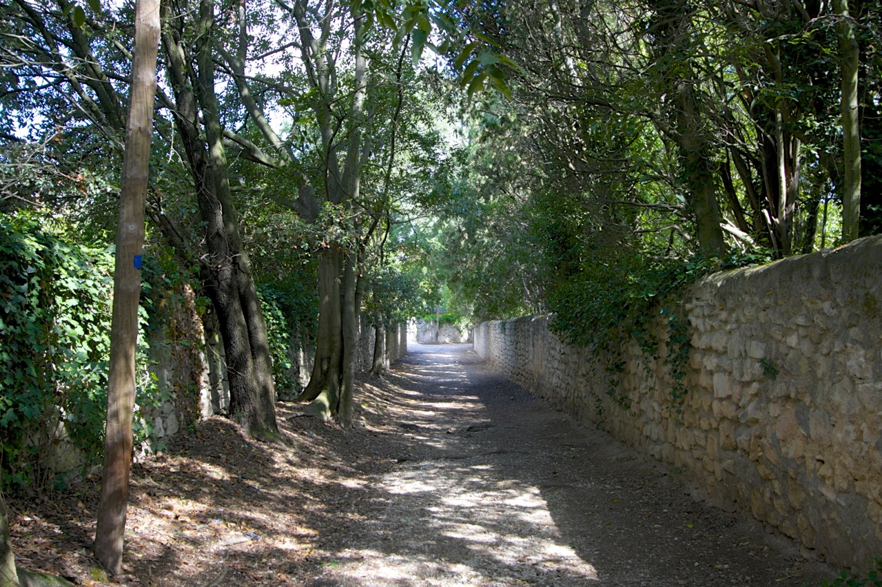 フォンヴィエイユ(Fontvieille) プロヴァンス Provence 南仏 南フランス