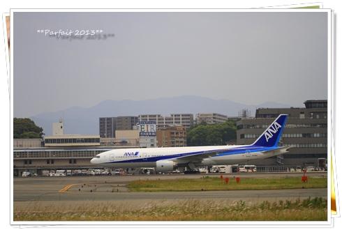 _MG_5359-2013.jpg