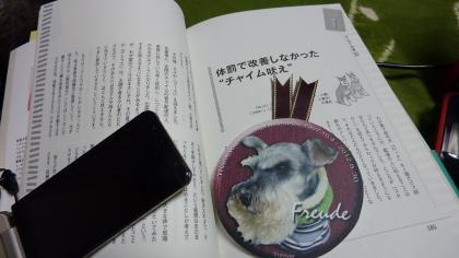 P1140231.jpg