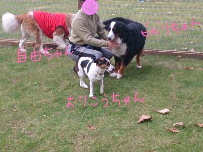 fc2_2013-11-02_16-20-39-232.jpg