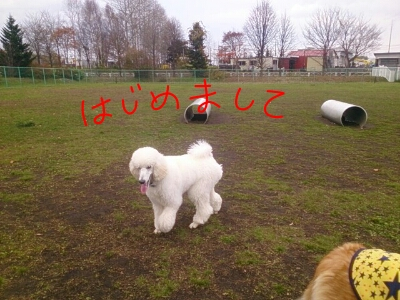 fc2_2013-11-06_18-46-20-790.jpg