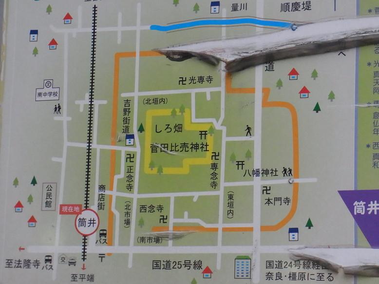 tsutsui_1.jpg