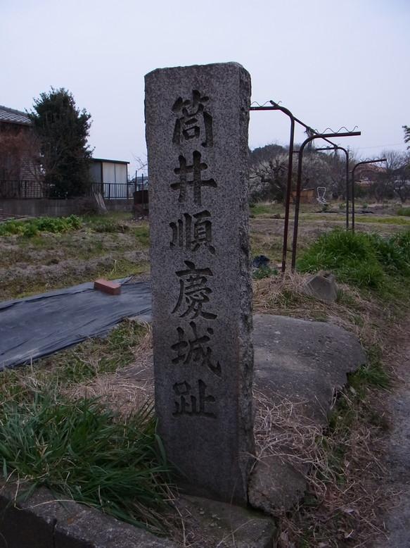 tsutsui_2.jpg