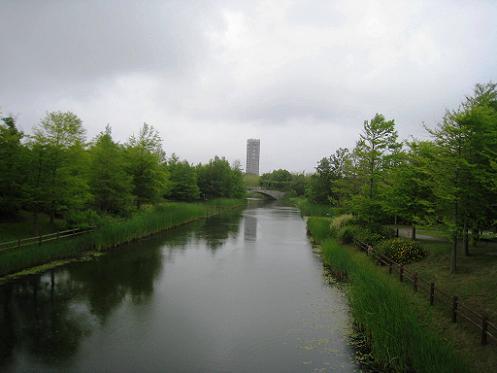 2013-06-01-6.jpg