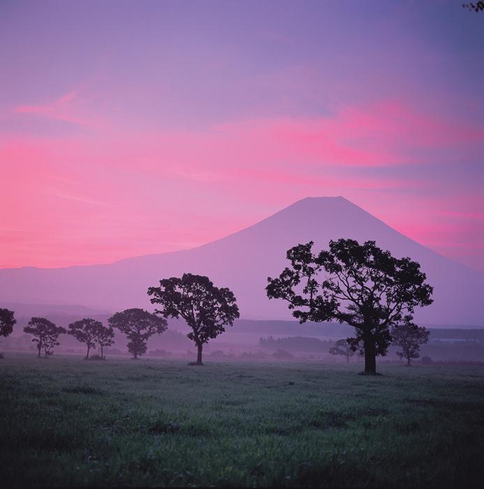 富士山と朝霧高原②
