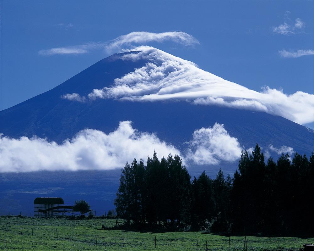 富士山朝霧高原