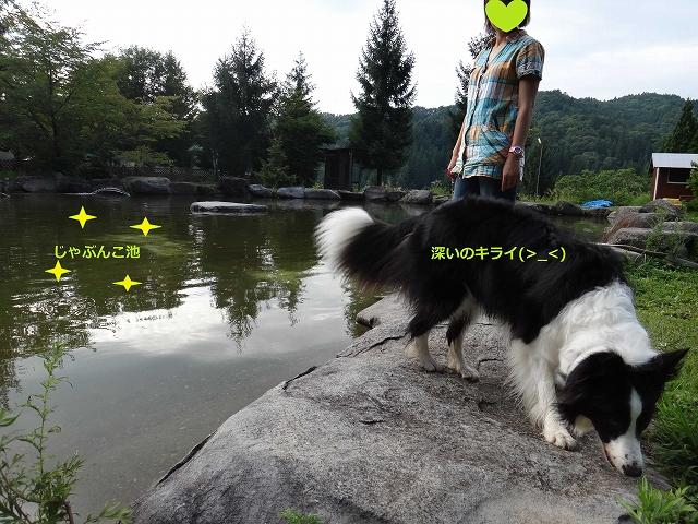 2013_0821_163628AA.jpg