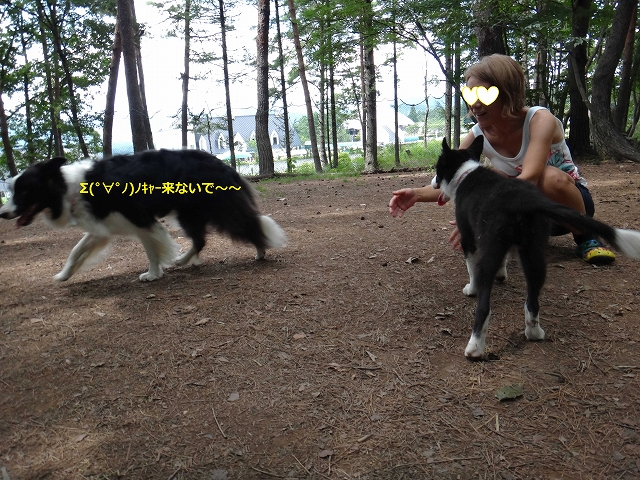 2013_0822_134247AA.jpg