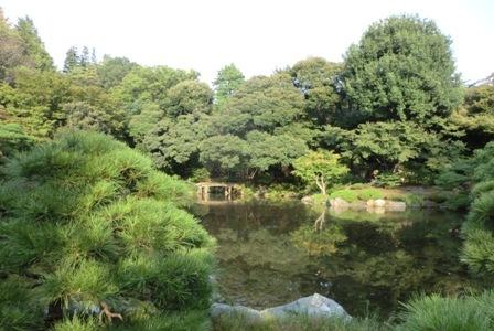 古河庭園9