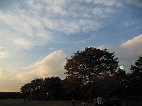 中央公園の夕暮れ