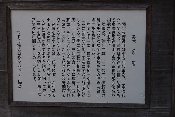 P1242778.jpg