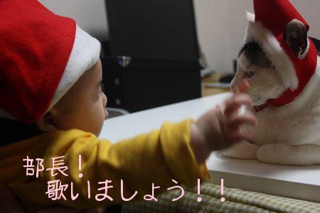 utaiasho.jpg