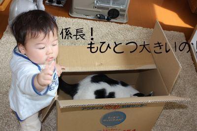 もひとつおおきいの (2).jpg