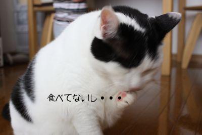 wasokamao.jpg