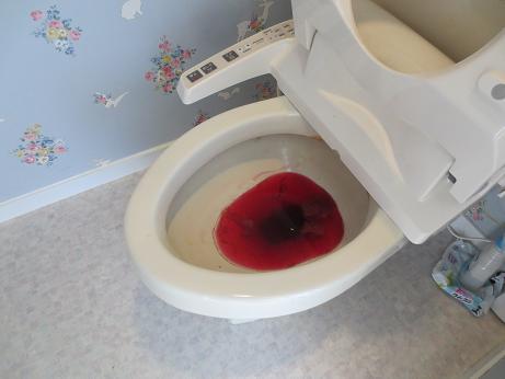 トイレ尿石液