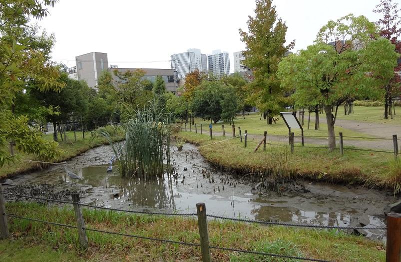 干上がった池
