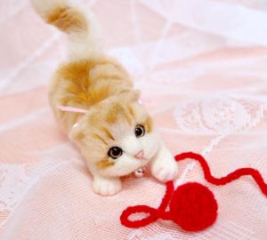 ミニ白茶トラ子猫130724 013