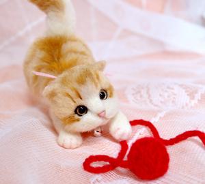ミニ白茶トラ子猫130724 011