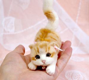 ミニ白茶トラ子猫130724 036