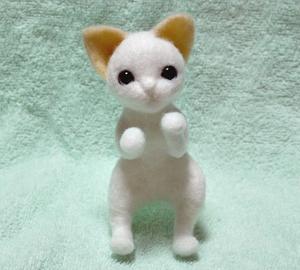 茶トラ猫130916 009
