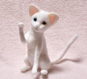 オッドアイ白猫130925 008