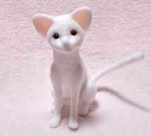 オッドアイ白猫130925 002