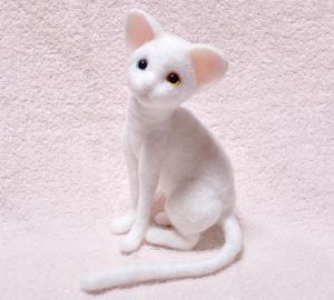 オッドアイ白猫130925 004