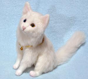 オッドアイ白猫-1301001 053