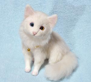 オッドアイ白猫-1301001 015